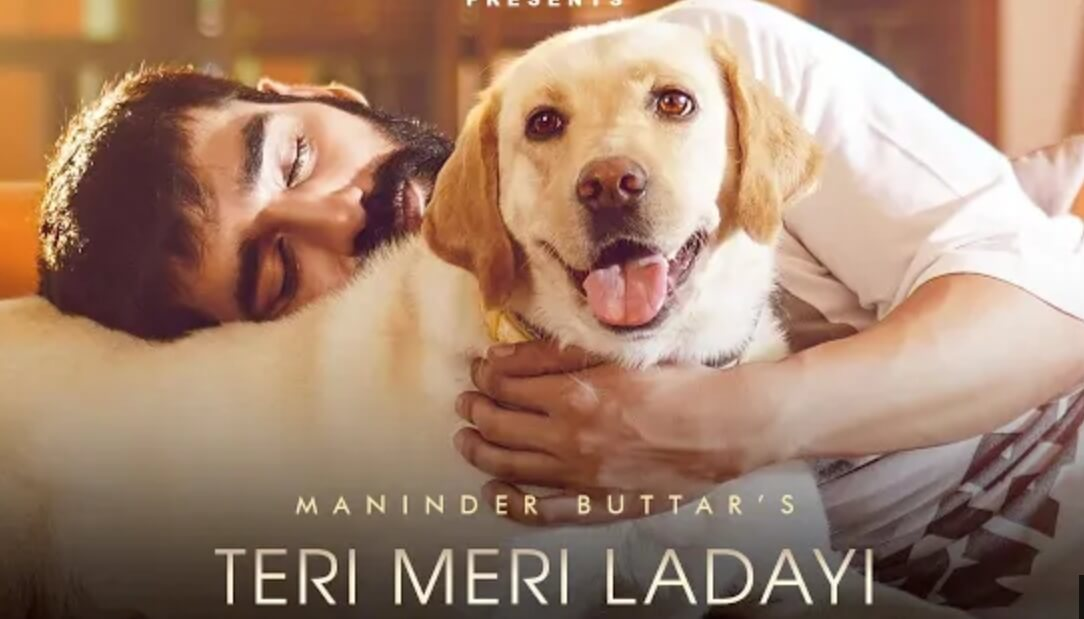 Teri meri ldayi song download in mp3